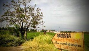 campo di libera alla masseria ferraioli