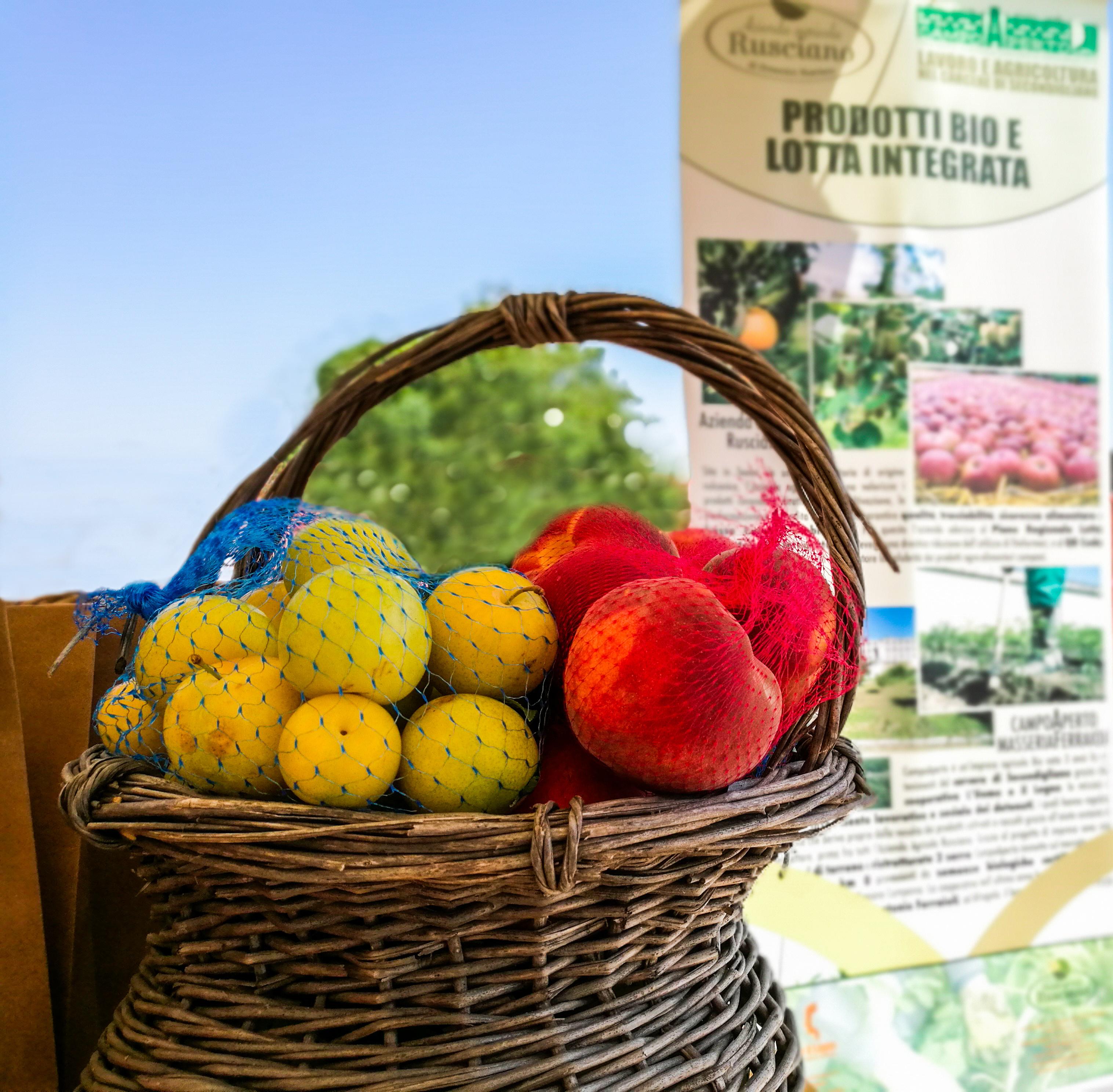 Frutta Day alla Masseria Ferraioli: scegli e raccogli con le tue mani!