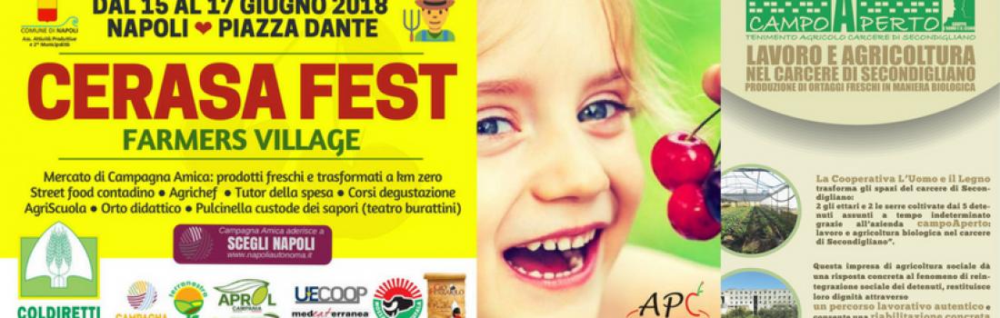 """Coldiretti e L'Uomo e il Legno: l'agricoltura sociale protagonista al """"Cerasa Fest 2018"""""""