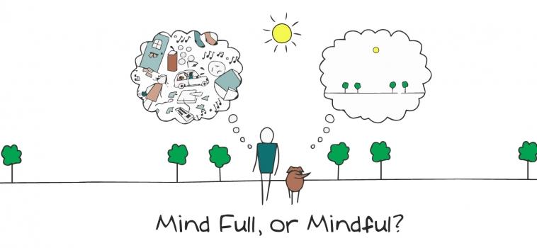 Il benessere e la mindfulness vanno a scuola